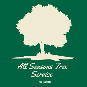 All Seasons Tree Service of Elgin