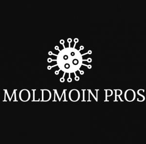 MoldMoin Pros