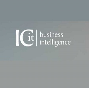 ICit Business Intelligence