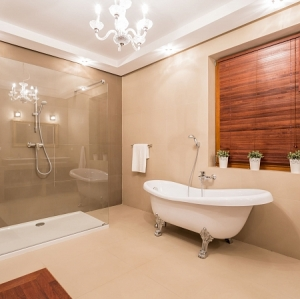 Bathroom Remodeling Ideas NY