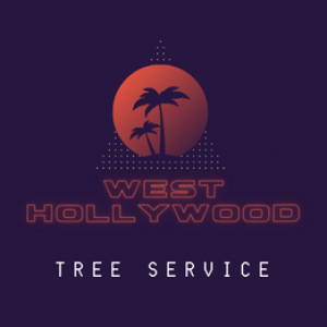 West Hollywood Tree Service