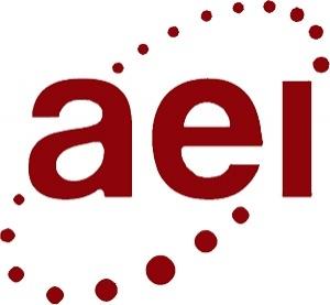 AEI Inspections