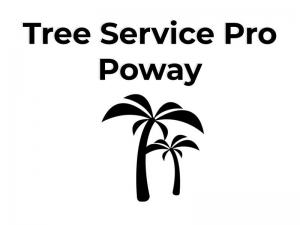 Pro Star Tree Service Poway