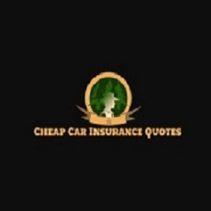 Cheap Car Insurance Arlington TX