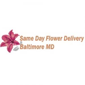 Same Day Flower Delivery Baltimore MD - Send Flowe
