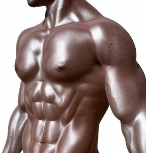 Exotique Men Male Strippers NYC