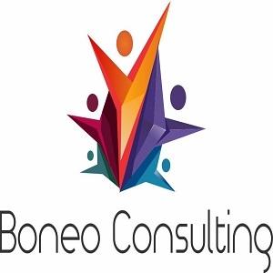Boneo Consulting