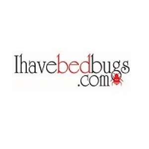 I Have Bed Bugs