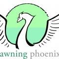 Dawning Phoenix LLC