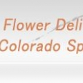 Same Day Flower Delivery Colorado Springs
