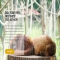 Timberwood Tree Service