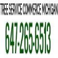 Tree Service Commerce
