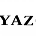 Yazole Watches