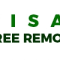 Visalia Tree Removal Pros.