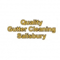 Quality Gutter Cleaning