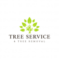 Xpress Tree Service and Removal