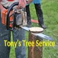 Tony's Tree Service