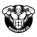 MEGAPUMP