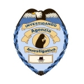 "Agenzia Investigativa ""Investigando"""