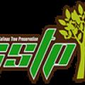 Stockton Tree Service Experts