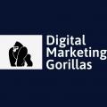 Digital Marketing Agency in Chicago – D M Gorillas