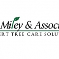 Al Miley & Associates | Expert Tree Care Solutions