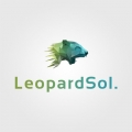 Leopard Sol - Web Design Agency USA
