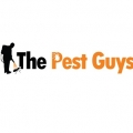 The Pest Guys