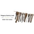 Magnus Sentry Lock
