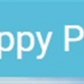 Happy Path