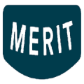 Merit Auto Spa