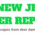 New Jersey Deer Repellent - Deer Control