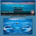 Pegasus Water LLC
