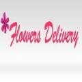 Same Day Flower Delivery Chicago IL - Send Flowers
