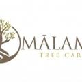 Malama Tree Care