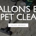 O'Fallon's Best Carpet Cleaner
