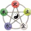 The Shiatsu Healing Center