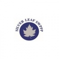 Silver Leaf SWPPP