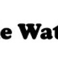 Whale Watch Alaska