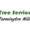 Tree Service Farmington Hills Pros