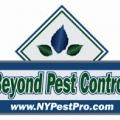 Beyond Pest Control Inc