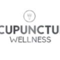 Acupuncture Wellness Houston