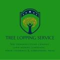 Tree Lopping Service Perth