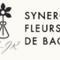 Synergie Fleurs De Bach