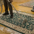Queens Carpet Cleaning Pros