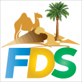 Fun Desert Safari
