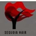 Sequoia Hair
