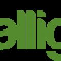 Alligatr - Small Business Marketing